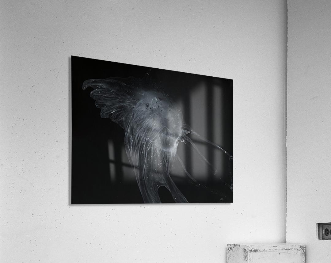 Glowing grey jellyfish in the dark water  Acrylic Print