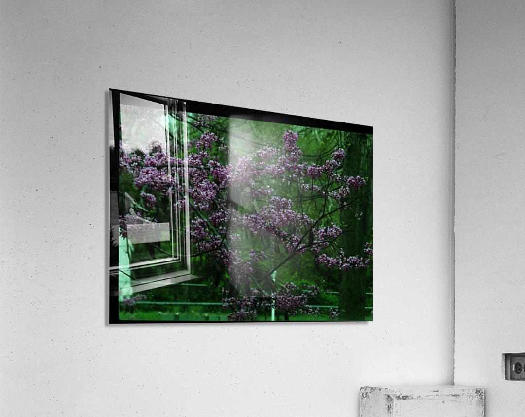 sofn-094A1D2D  Acrylic Print