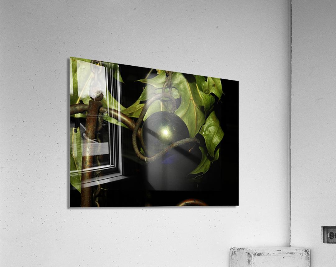 sofn-DD9E757F  Acrylic Print