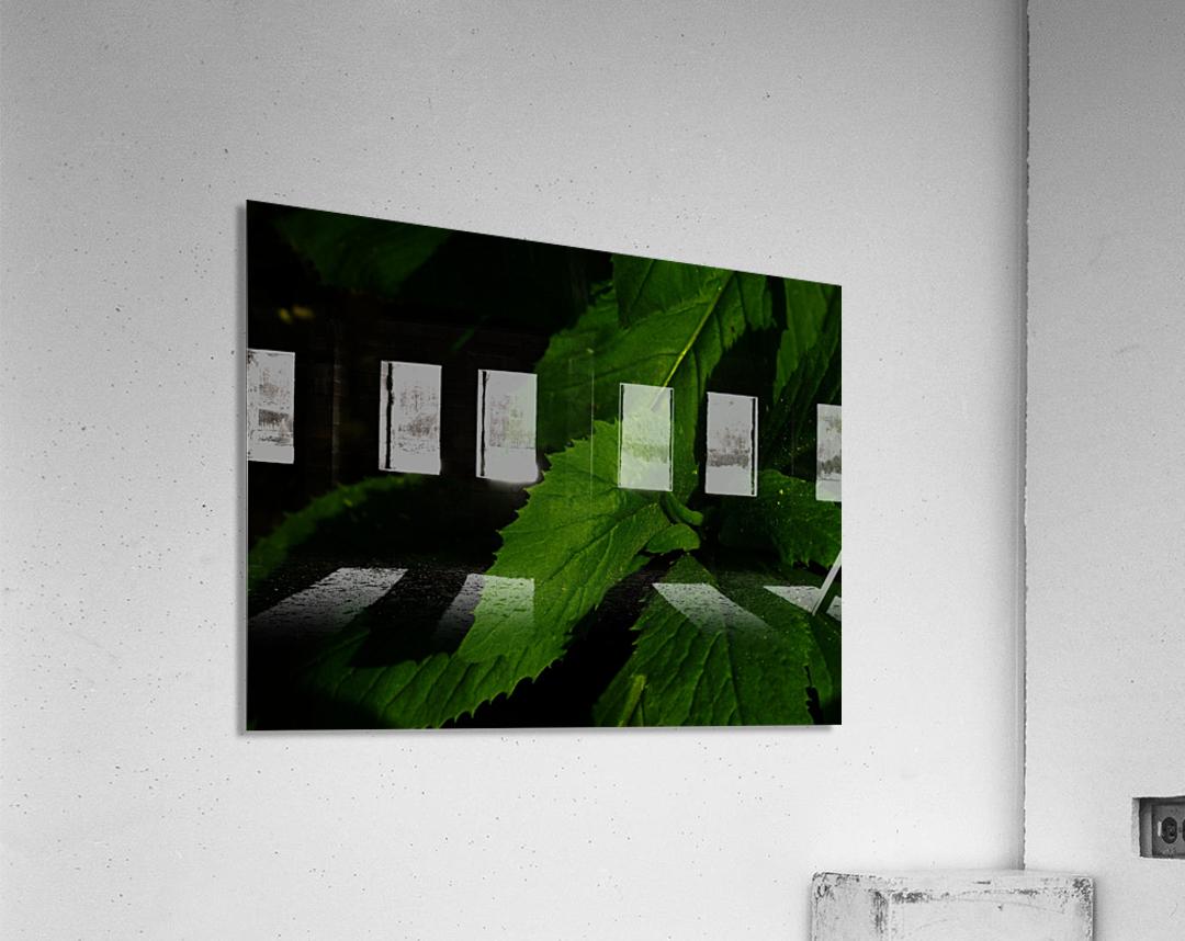 sofn-B03175AE  Acrylic Print