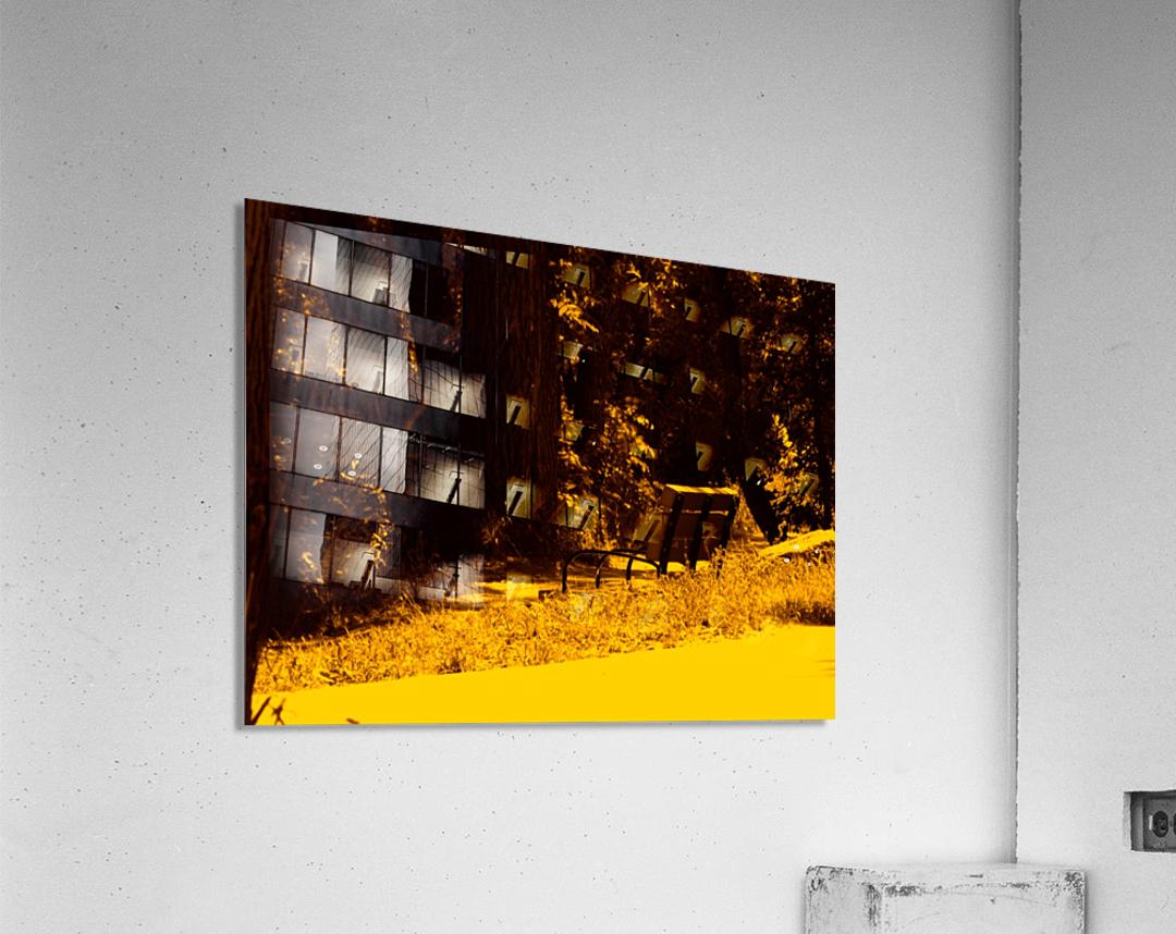 sofn-A43A391F  Acrylic Print