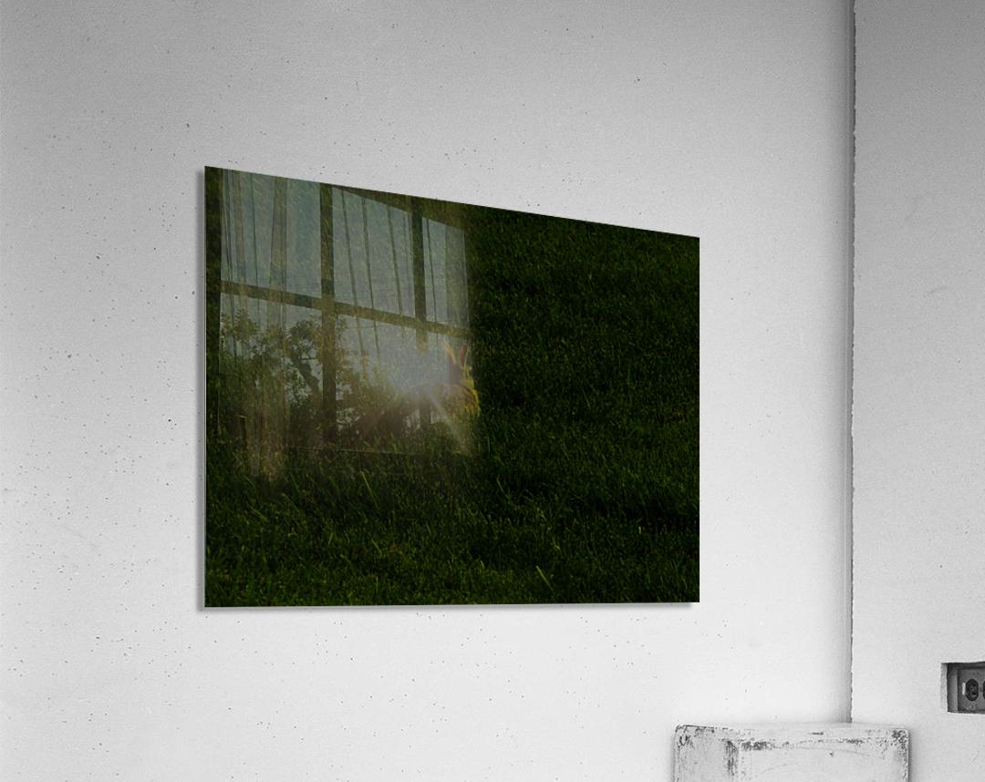 sofn-7397E3E2  Acrylic Print