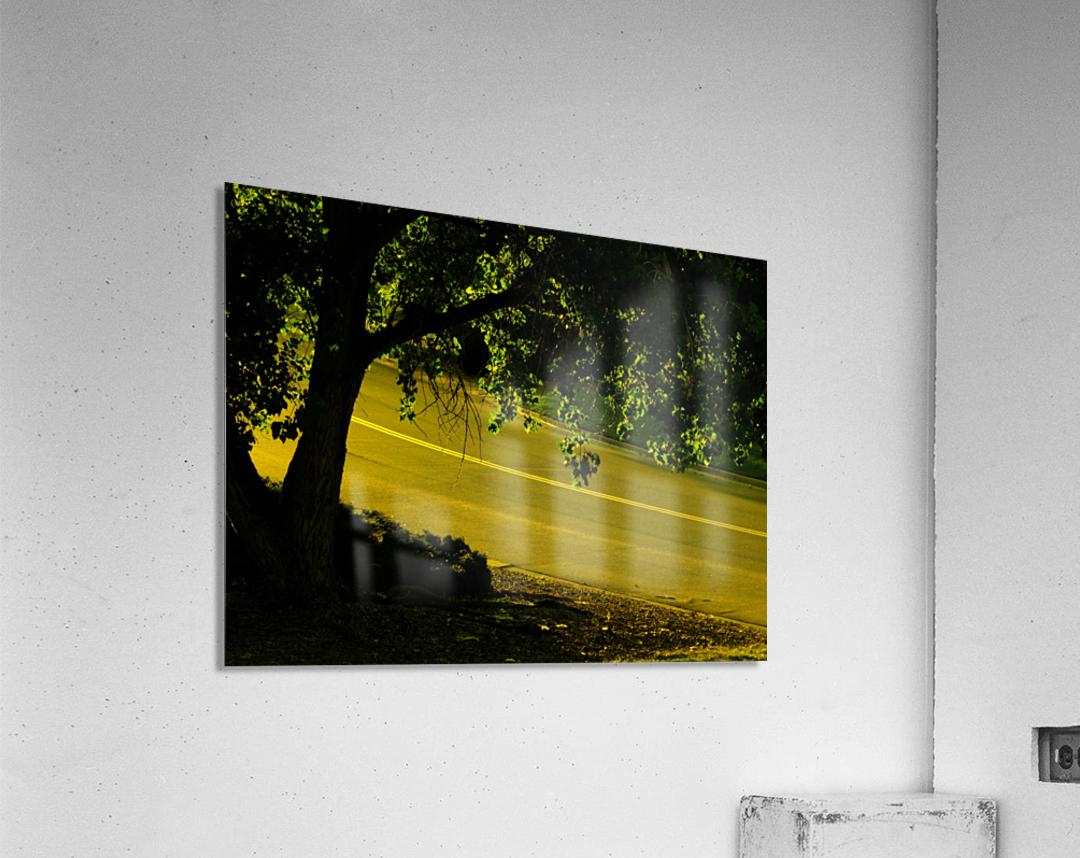sofn-2B15499B  Acrylic Print