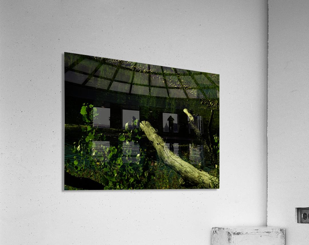 sofn-DC7396D7  Acrylic Print