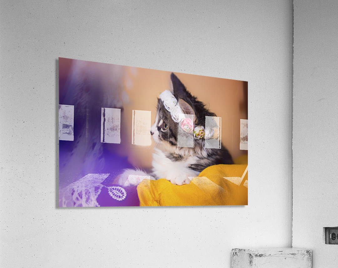 Murmur 3  Acrylic Print