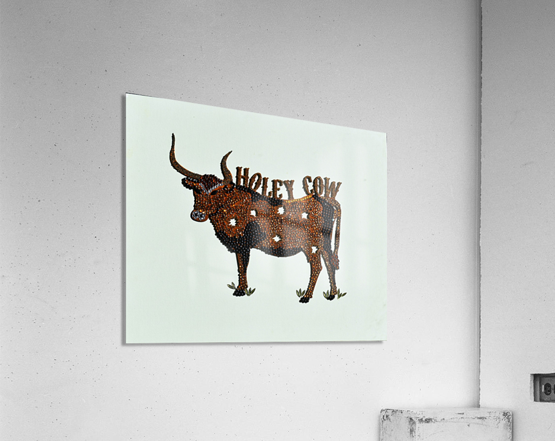 Holy Cow. Stephen R  Acrylic Print