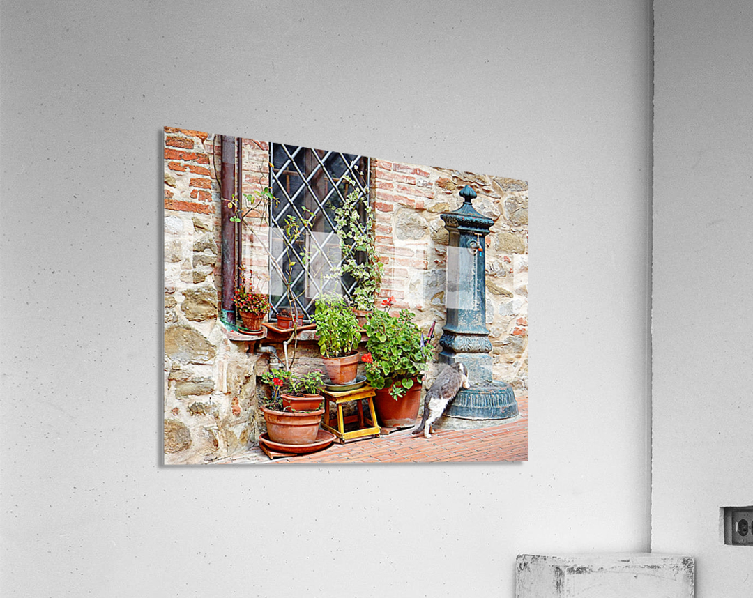 Pawse for a Drink in Paciano  Acrylic Print