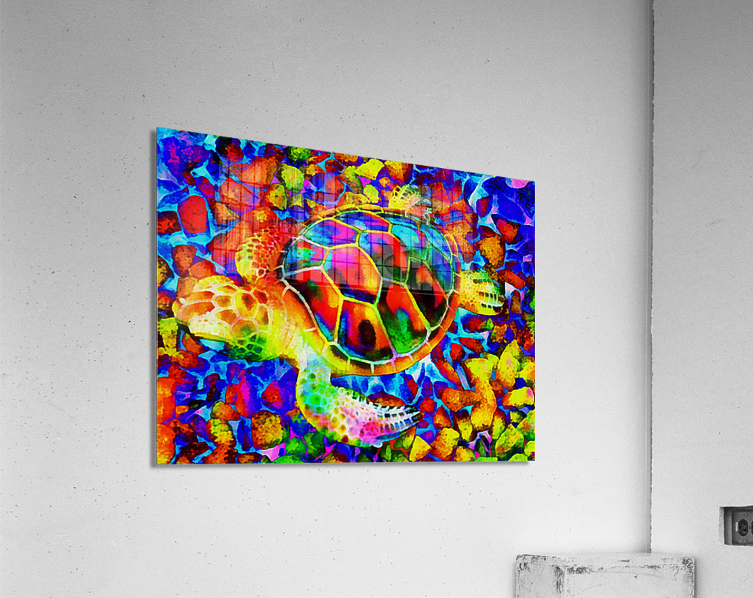 Rainbow Turtle  Acrylic Print
