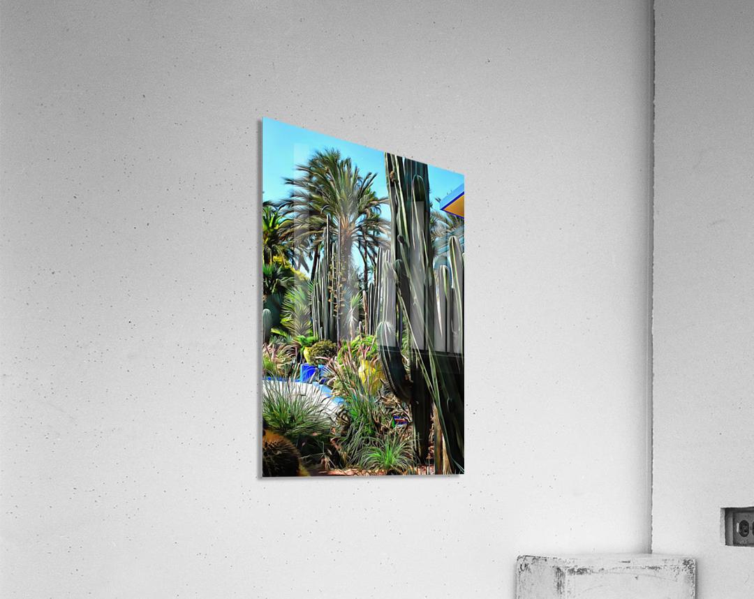 Giant Cacti Jardin Majorelle Marrakech  Acrylic Print