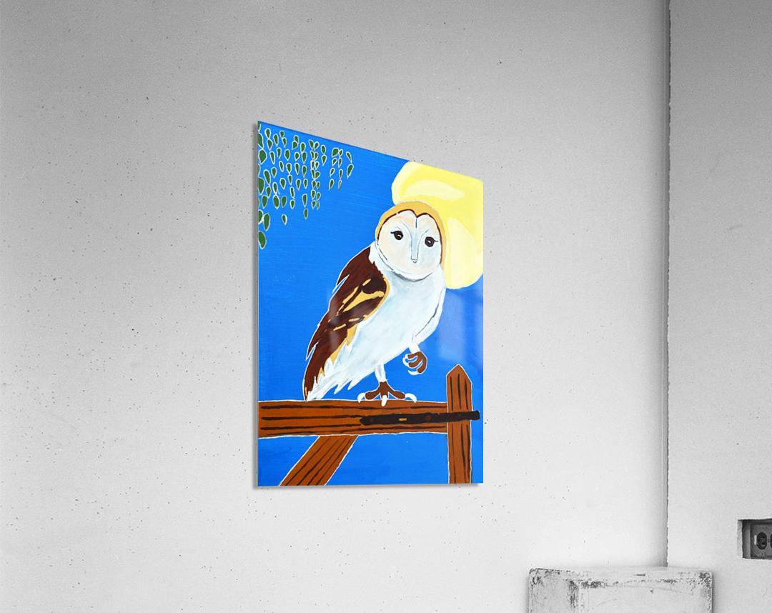 Davere H. Owl  Acrylic Print