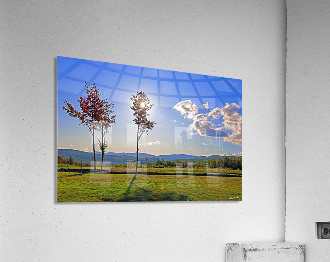 Jericho Meadow  Acrylic Print