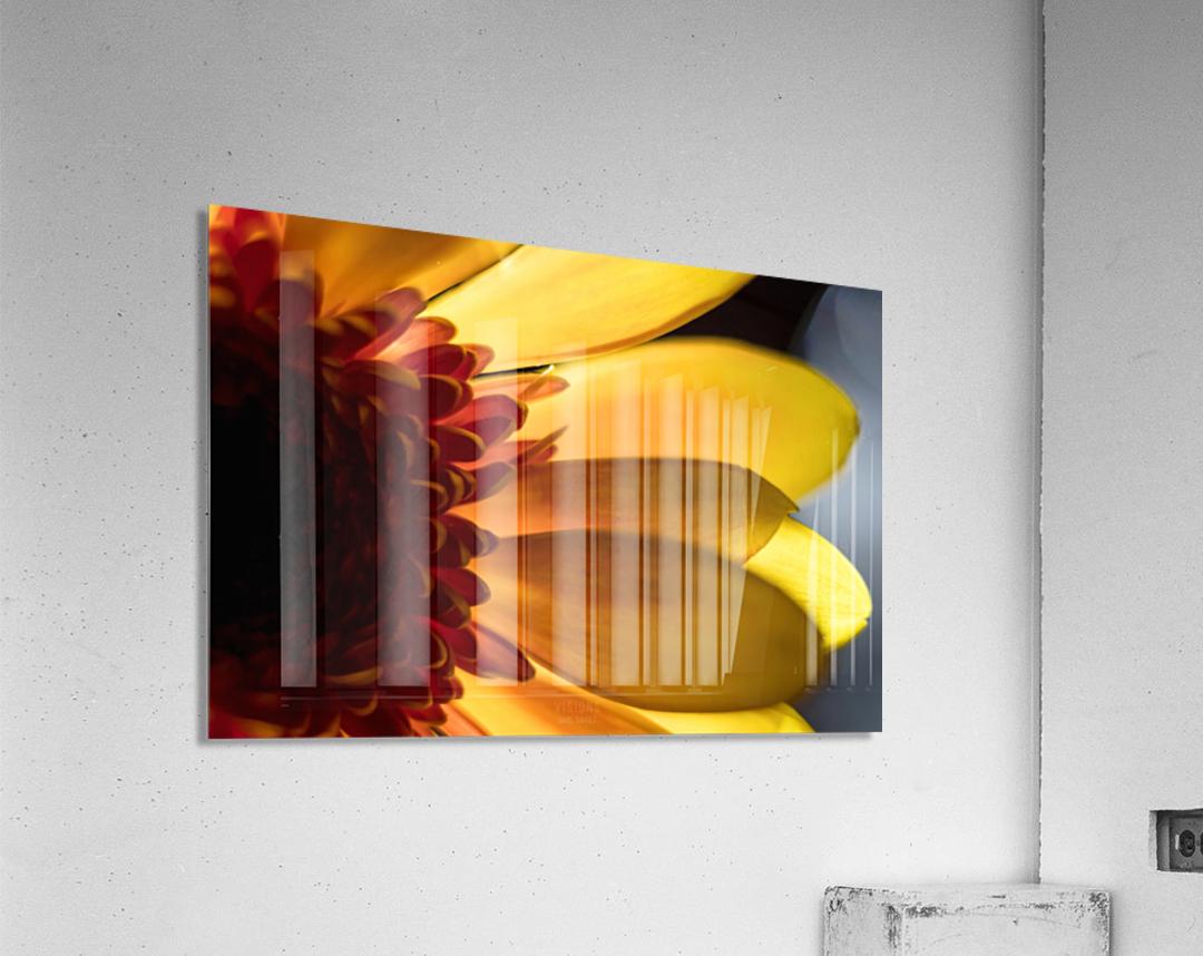 Jaune 3  Acrylic Print