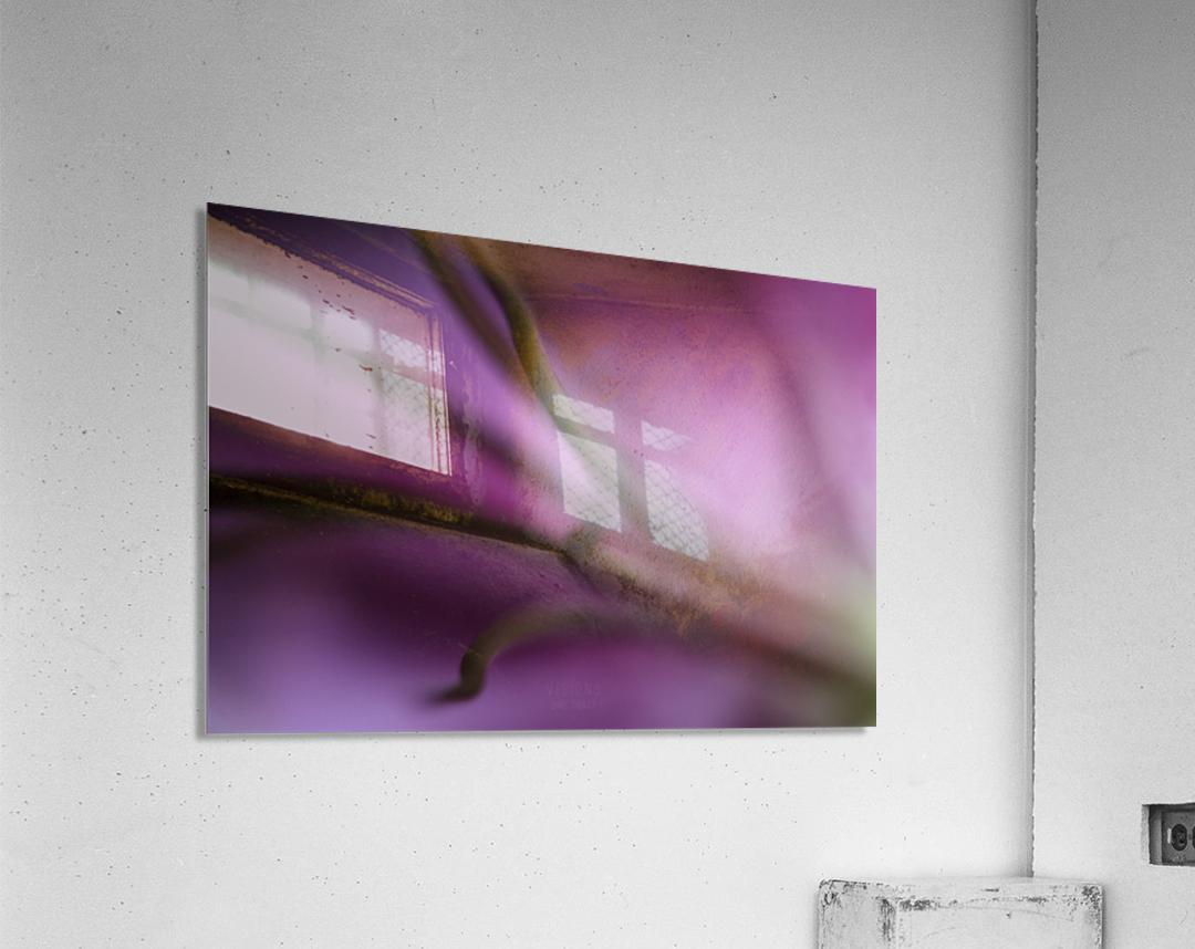Pinky 1  Acrylic Print