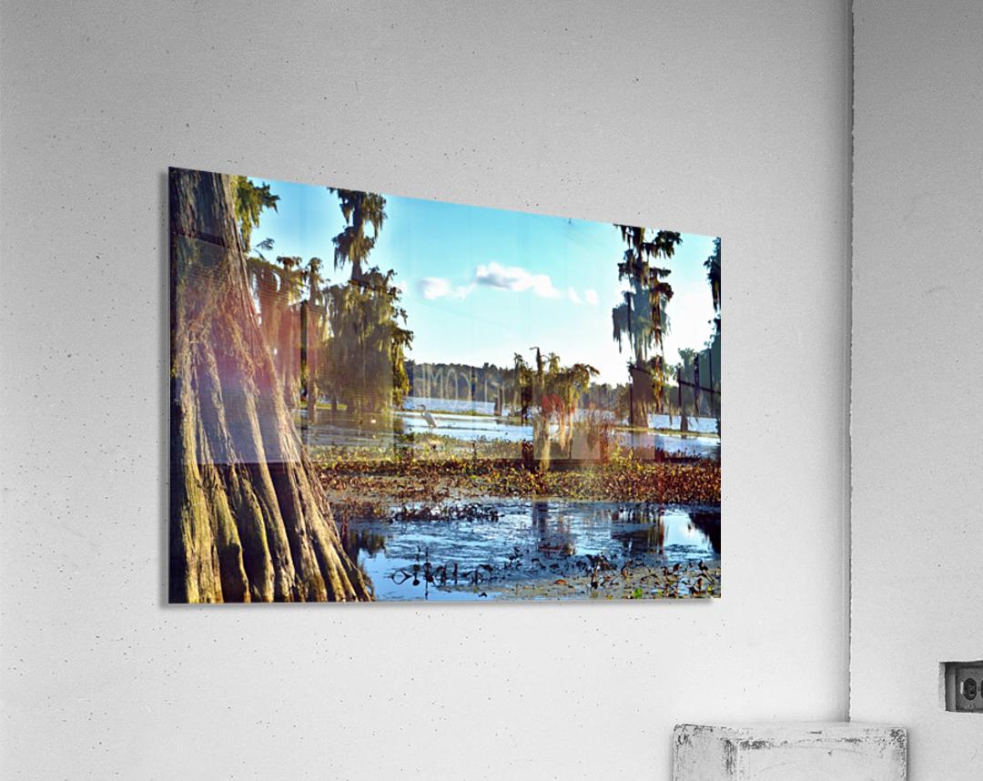 Seek Me Out  Acrylic Print