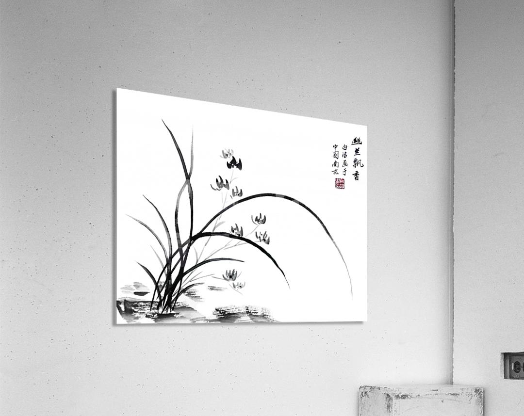 Chinese Iris  Acrylic Print