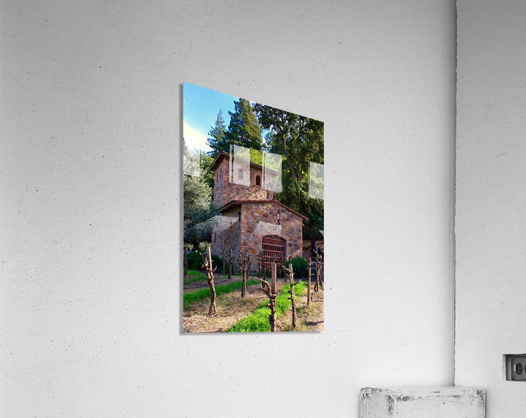 IMG_8112  Acrylic Print
