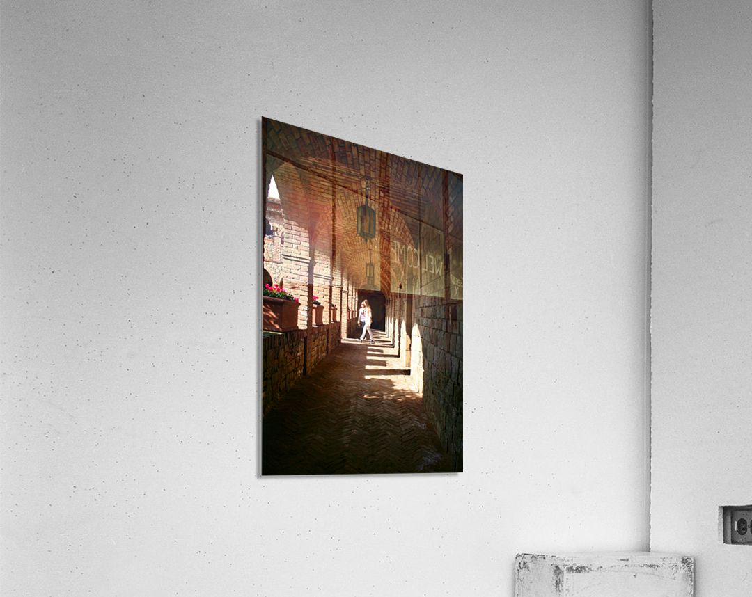 IMG_8147  Acrylic Print