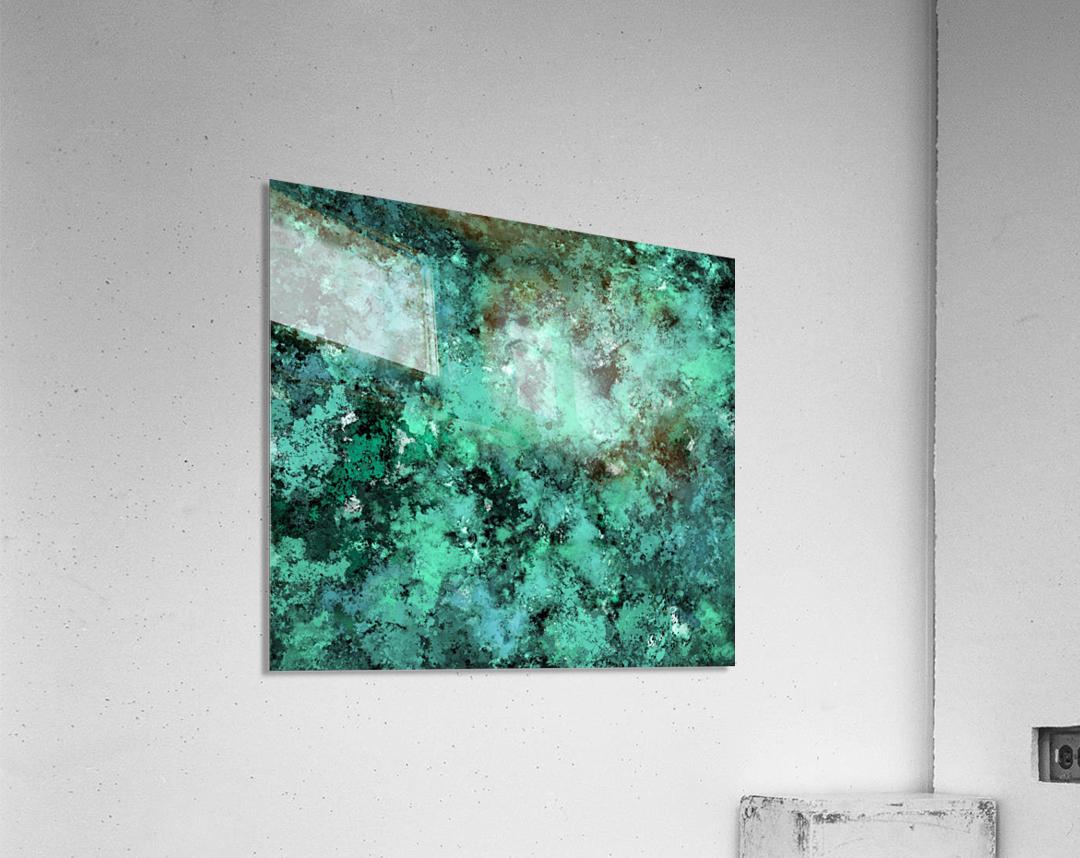 Decompose  Acrylic Print