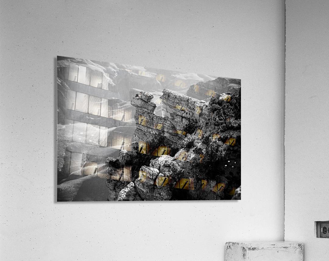 DSC_4863  Acrylic Print
