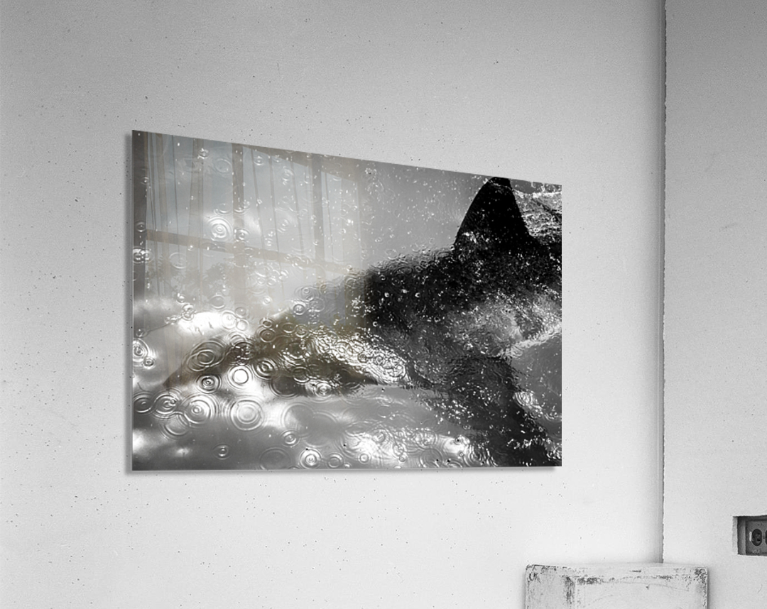 The Beauty and Beast Beneath  Acrylic Print