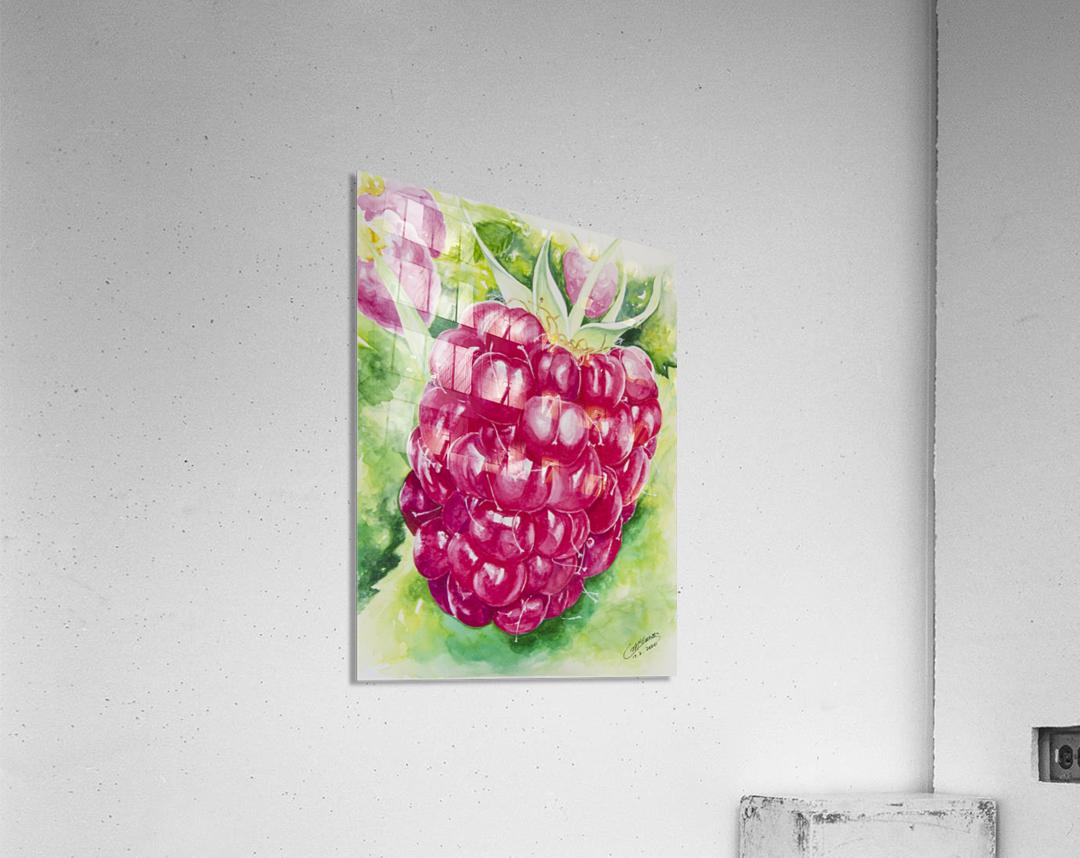 Summer Flavor: Raspberry I  Acrylic Print