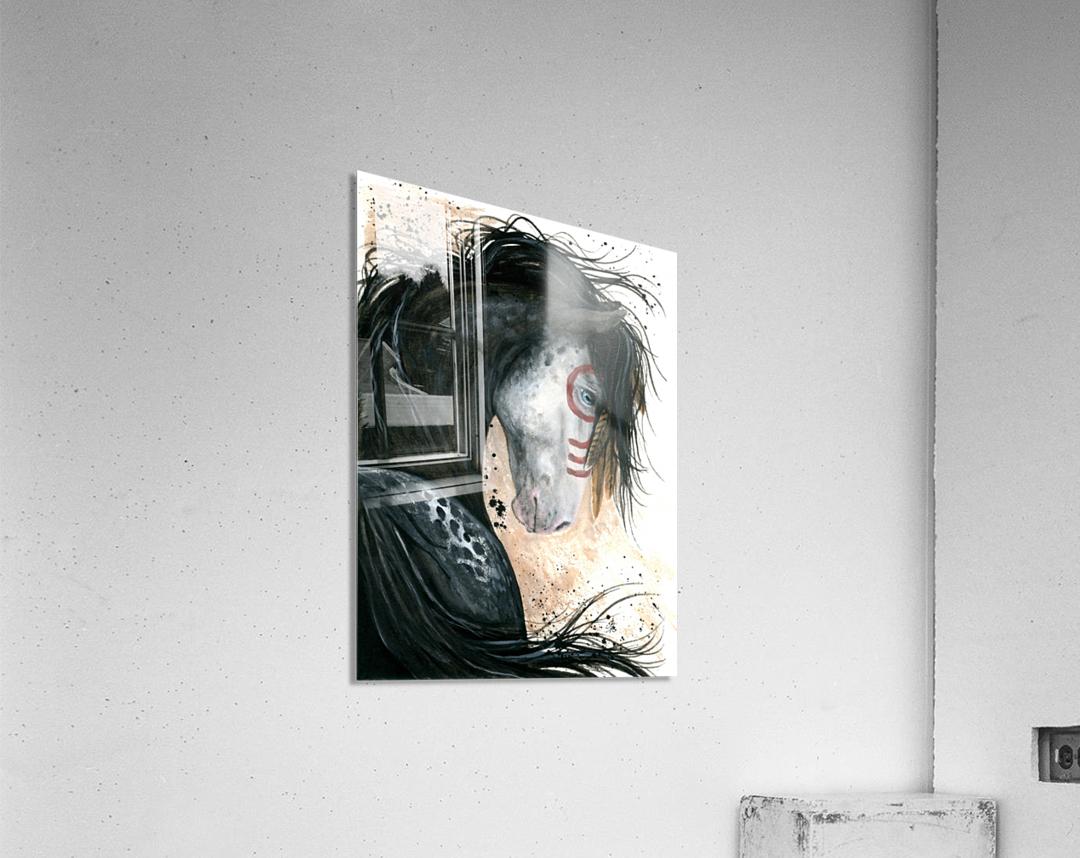 Appalossa Painted Horse  Acrylic Print