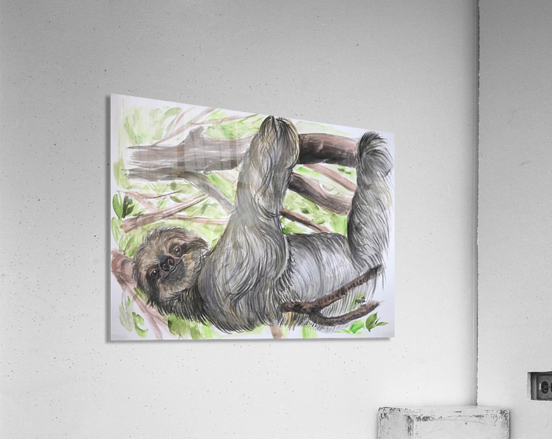 Collection COSTA RICA-Sloth  Impression acrylique