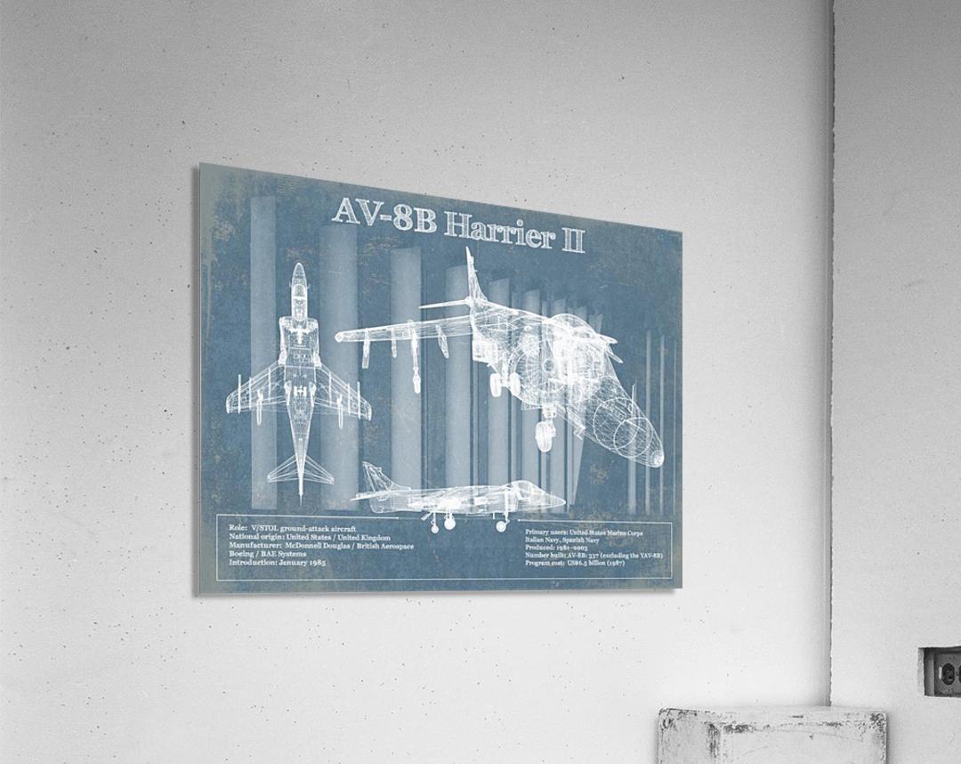 harrierII  Acrylic Print