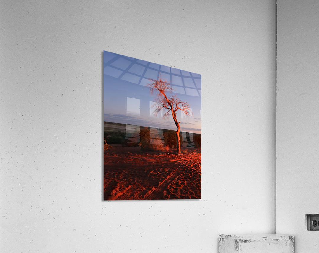 AdriaanPrinsloo 7215  Acrylic Print