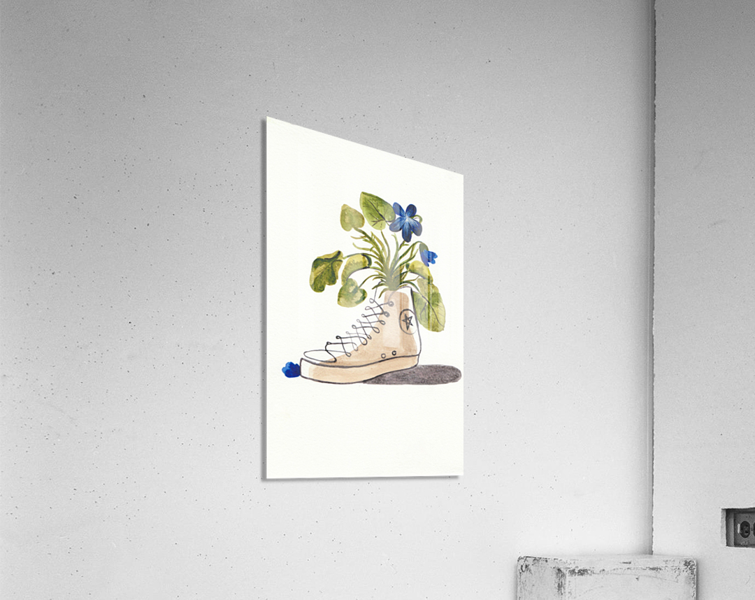 Chucks and Flowers   Acrylic Print