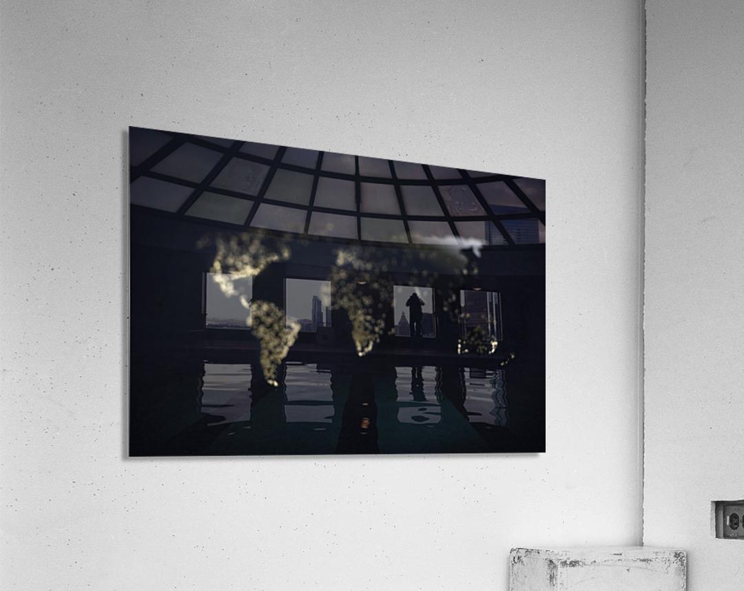 Dark Continent Heron  Acrylic Print