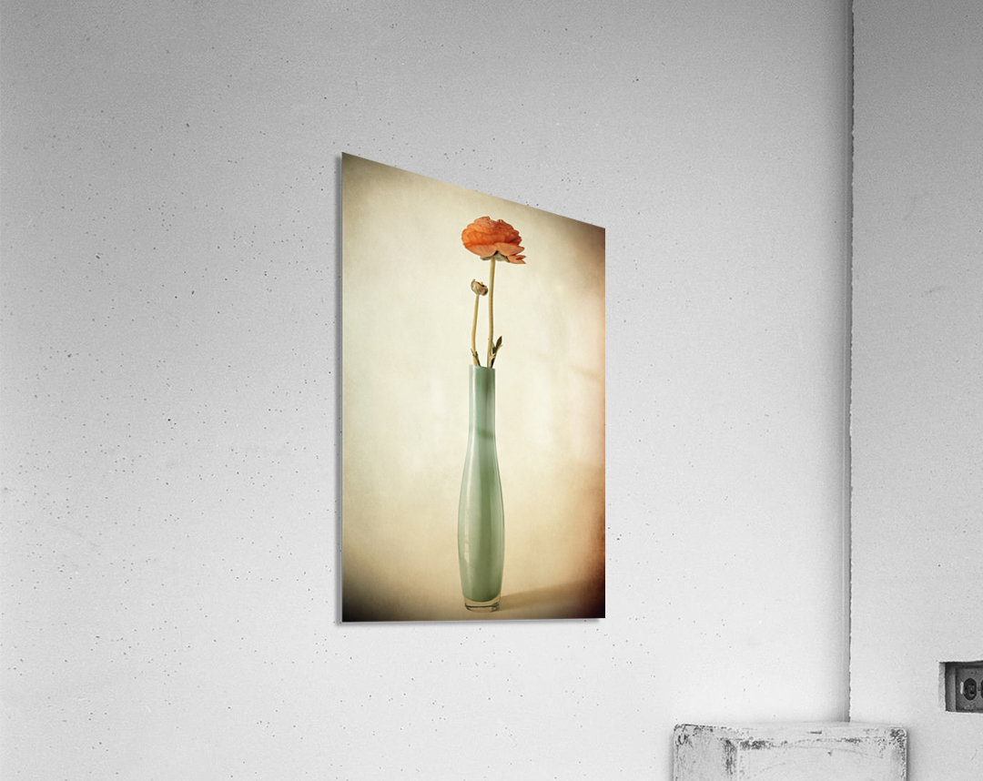 Vanishing  Acrylic Print
