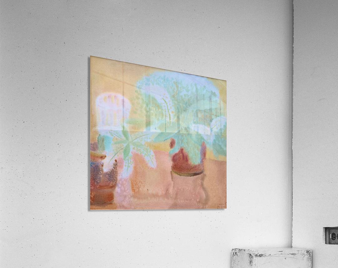 DSC_1046  Acrylic Print