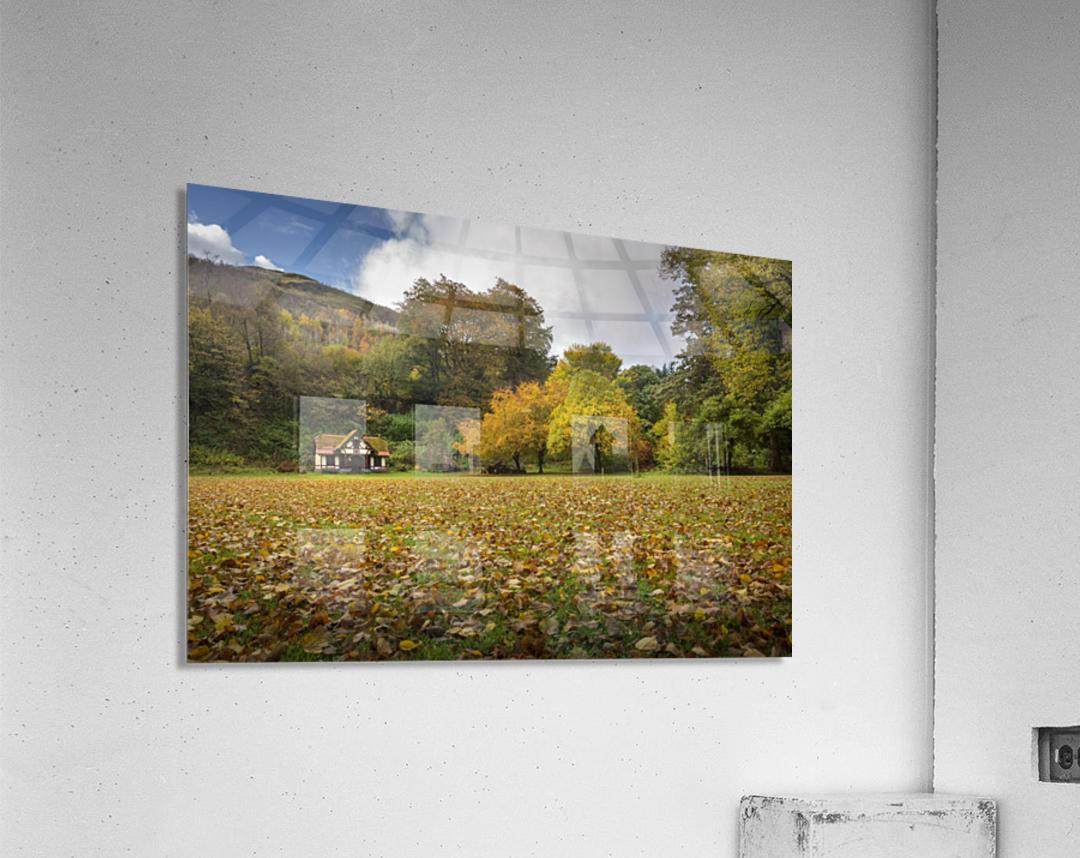 Autumn at Craig-y-Nos Country park   Acrylic Print