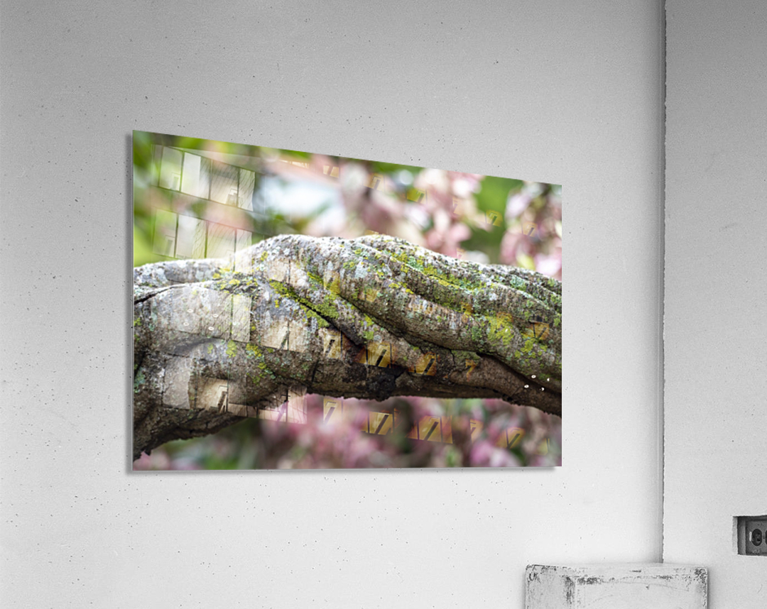 Force within  Acrylic Print