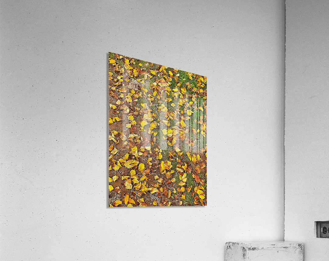 An Autumn Carpet  Acrylic Print