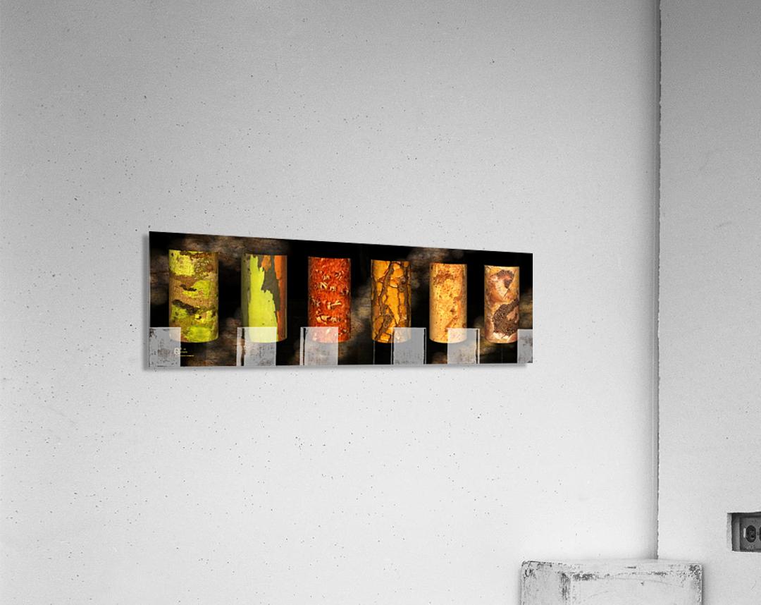 tree bark harmony  Acrylic Print