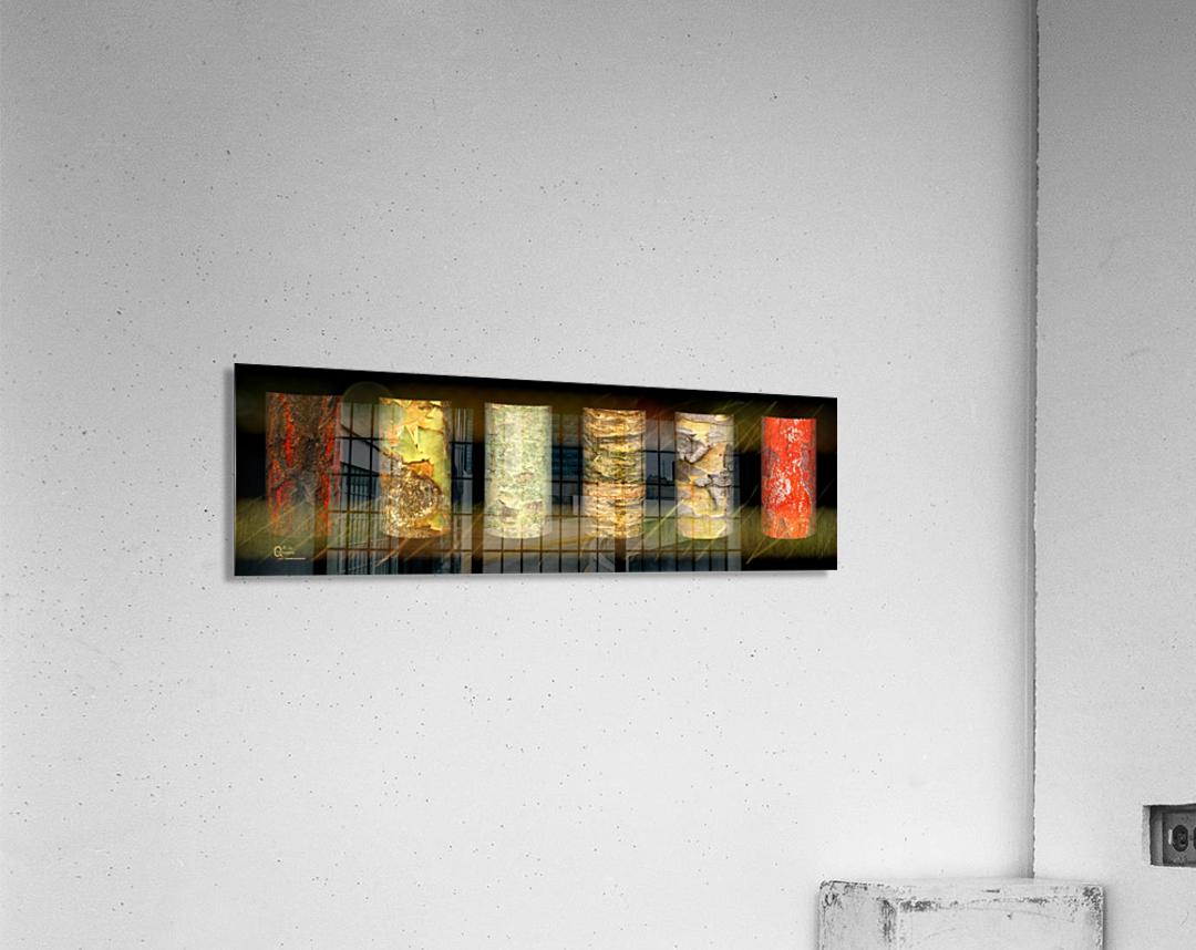 tree bark jungle  Acrylic Print