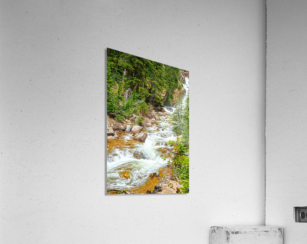 Spring Runoff Chipmunk  Acrylic Print