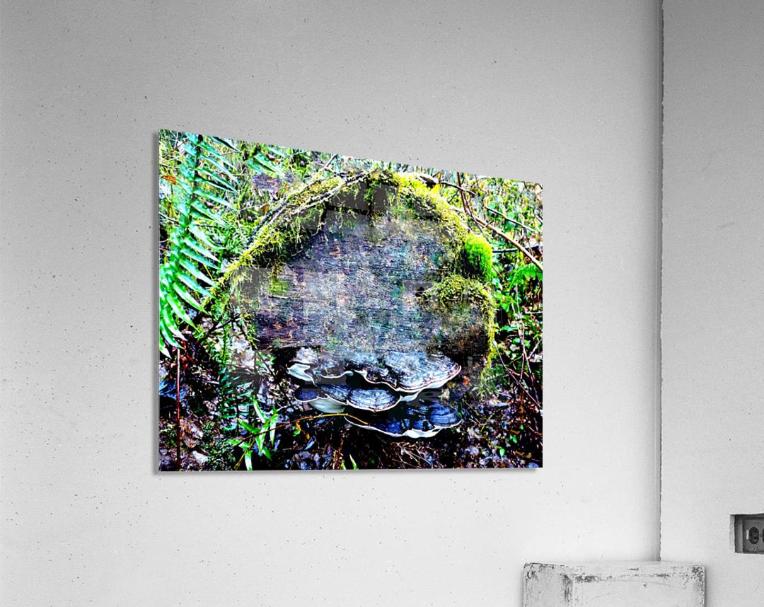 Tiny World 7 of 8  Acrylic Print