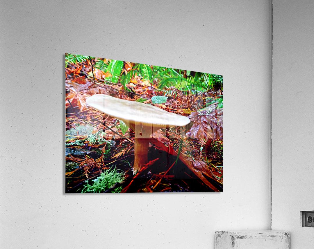 Tiny World 4 of 8 - Mushrooms and Fungi  Acrylic Print