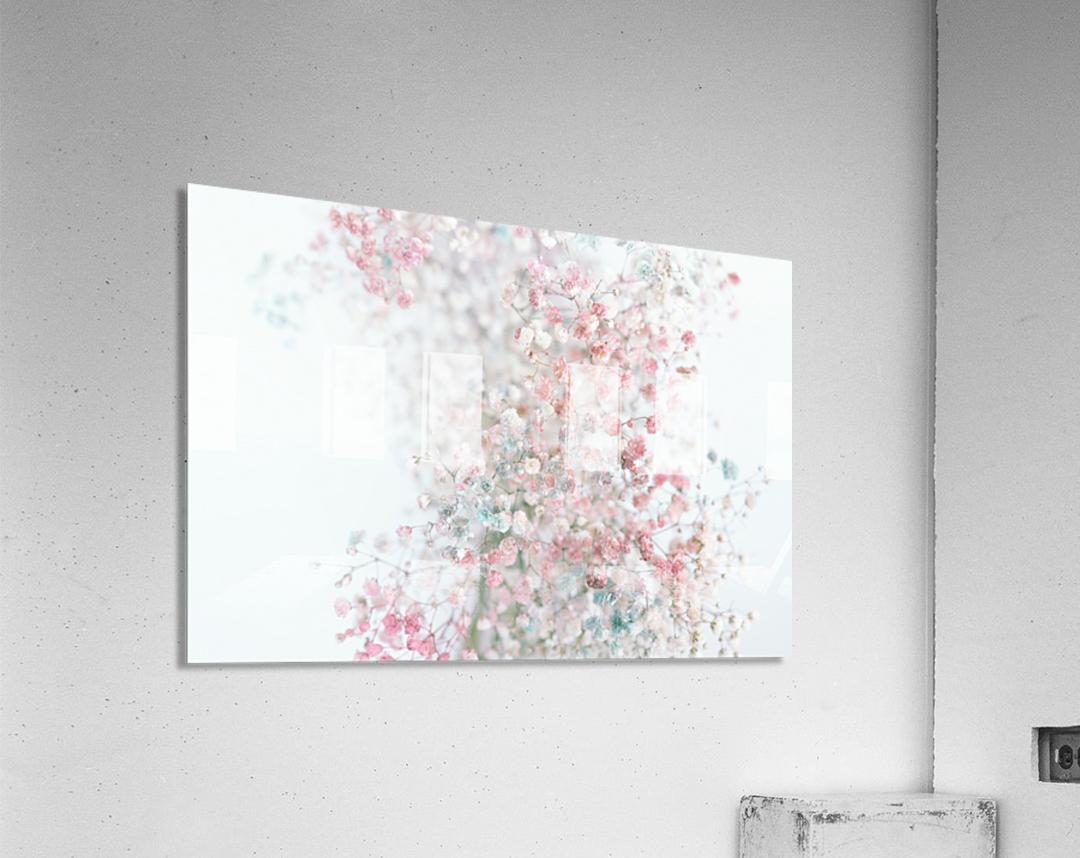 Daltana Pastel Floral Ceiala  Acrylic Print