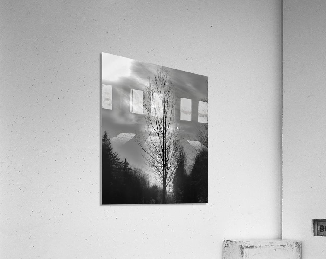 Assombri  Acrylic Print
