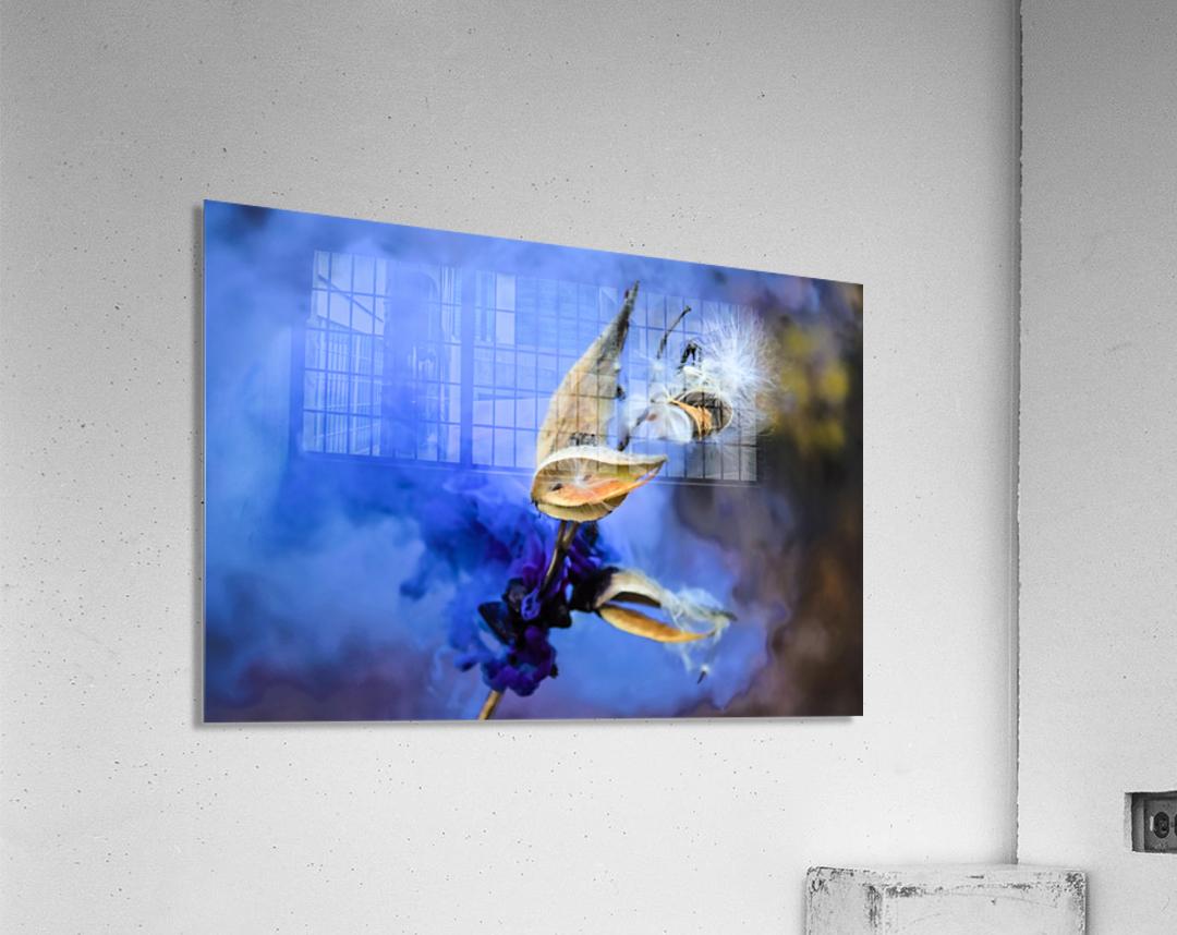 Folie  Acrylic Print