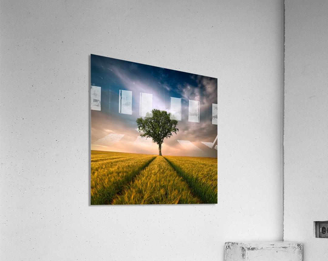 One by Piotr Krol (Bax)  Acrylic Print