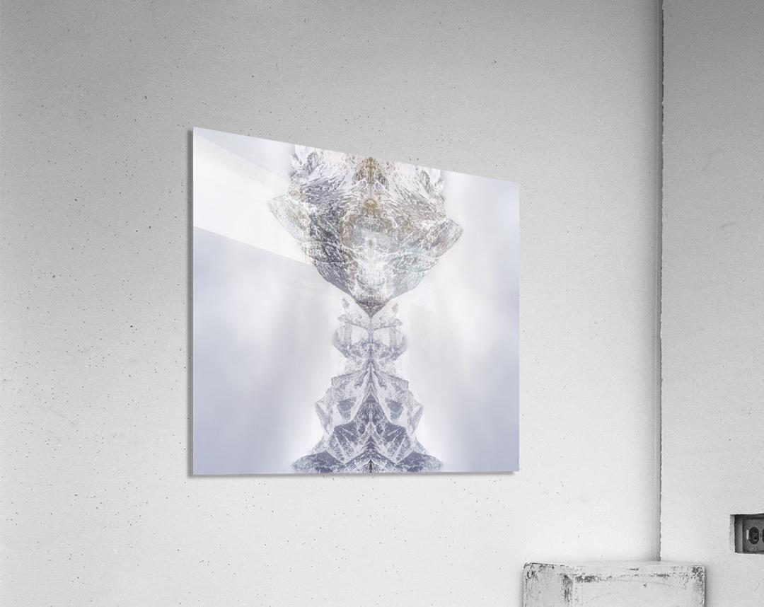 HIDDEN by Ignacio Palacios   Acrylic Print