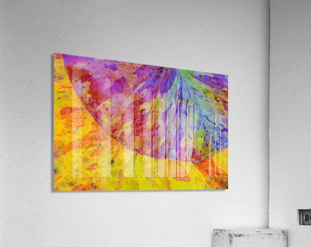 Colors Of Nature ap 2037  Acrylic Print