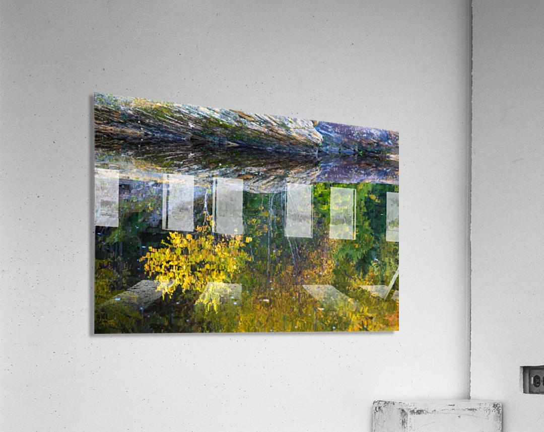 Reflection ap 2529  Acrylic Print