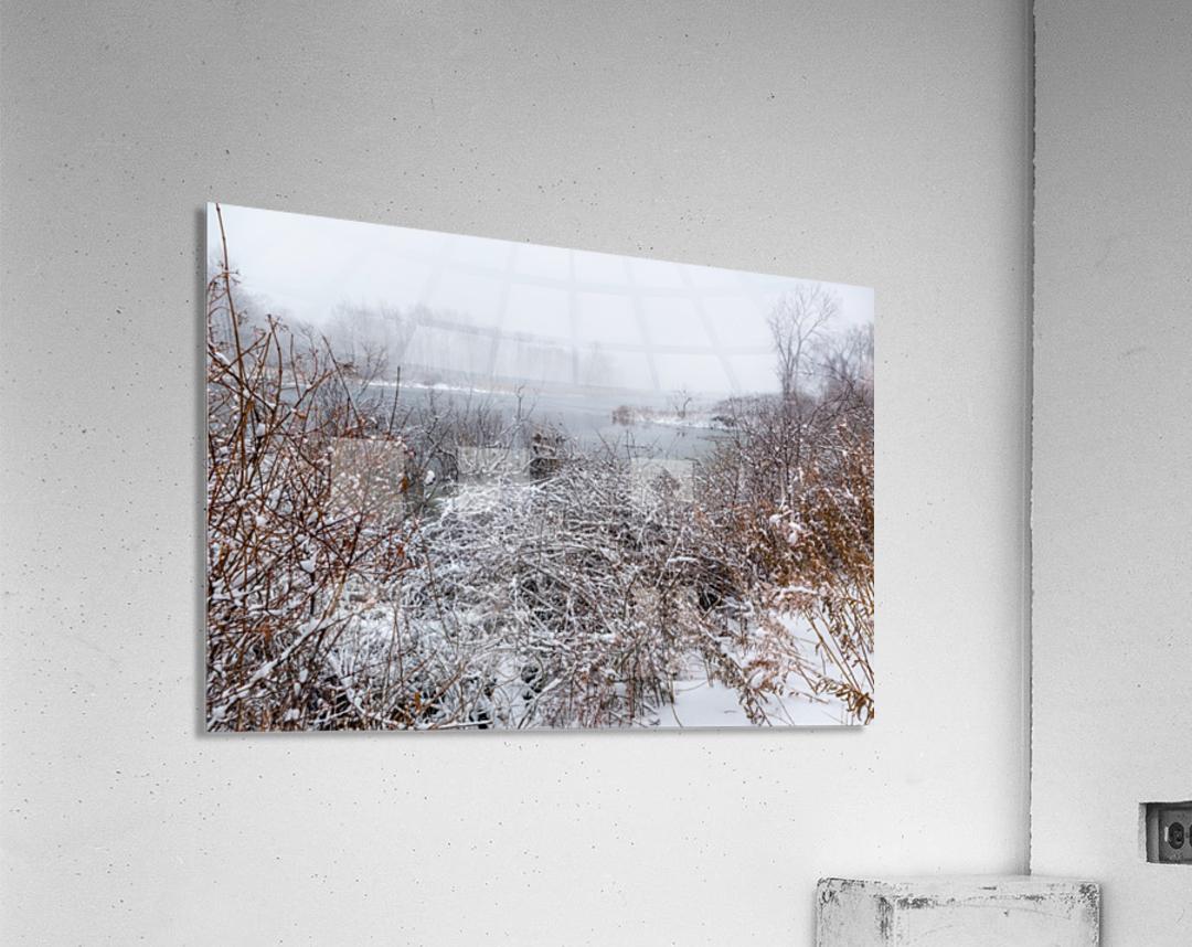 Winter ap 2708  Acrylic Print