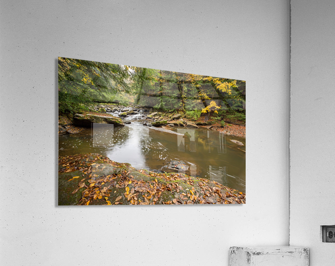 Fall Color ap 2453  Acrylic Print